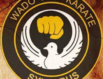 Wado Ryu Karate app